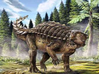 66baebcf45_82465_dinosaure-ankylosaure-kunbarrasaurus-ieversi-australian-geographic